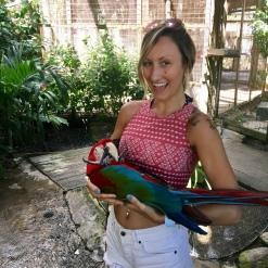 Parrot Baby
